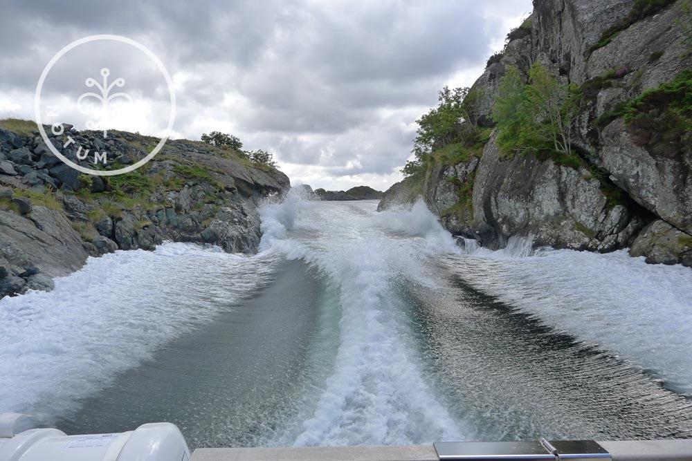 notum-bildegalleri-sognogfjordane-09